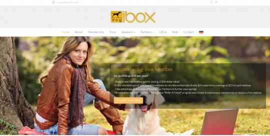 dog-ibox
